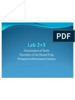 Lab 2+3 Other Disorders of Teeth and Pulpitis and PA Period on Tit Is (slide)