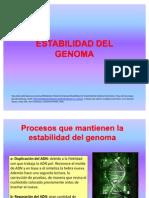 23-Estabilidad Del Genoma