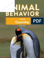 Animal Behaviour - Animal Courtship