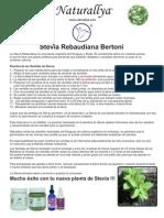 Siembra de Stevia NEW