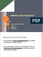 EMBRIOLOGIA PULMONAR