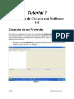 Programas de Consola Con NetBeans 5