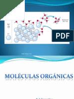 Mole Organicas