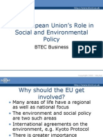 The European Union's Role in Social and Environmental Policy