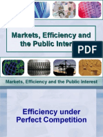 Markets, Efficiency and the Public Interest