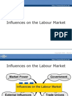 Influences on the Labour Market