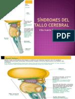 Sindromes Del Tallo Cerebral