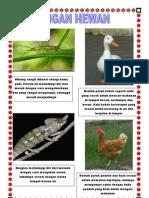 Adaptasi Hewan Dan Tumbuhan Terhadap Lingkungannya