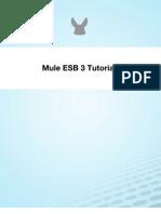 Mule Esb 3 Tutorial