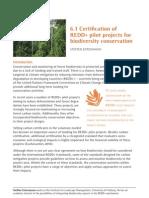 Biodeversity Conservation in REDD