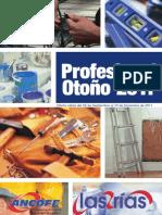 Profesional_2011