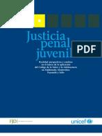 Justicia Penal Juvenil2010 FINAL