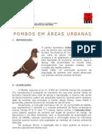 Cartilha Pombos - Prefeitura RJ - CCZ