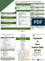 DIPTICO FIP 2011 y 2012