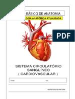 Apostila Anatomia Sistema Circulatorio