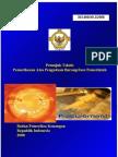 Petunjuk Teknis Pemeriksaan Atas Pengadaan Barang Dan Jasa Pemerintah