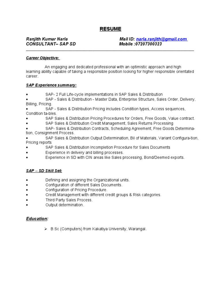 Sap Sd Consultant Resume Computer Network Cosmetics