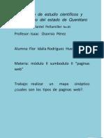 FLIRH_M2S3_AA2_2P Cuadro Sinoptico Tipos de Pagina.