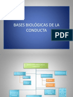 Power Bases Biologic As