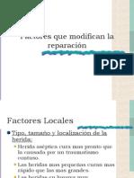 Factores Que Modifican La Reparación