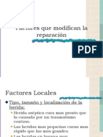 Factores Que Modifican La Reparación