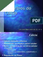 Cálcio