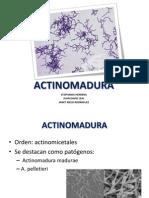 ACTINOMADURA