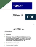 BG 17 ANIMALIA 2009