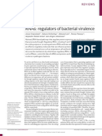 RNAs Regulators of Bacterial Virulence