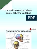 Traumatismos en El Cráneo, Cara y Columna (14)