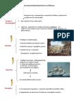 8. Οι οικονομικές δραστηριότητες των Ελλήνων