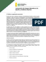 2_Politica_Organizacion_Preventiva