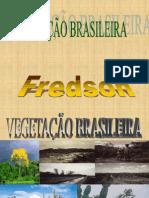 AULA, 3 - VEGETAÇÃO BRASIL