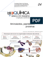 Aminoácidos Proteínas