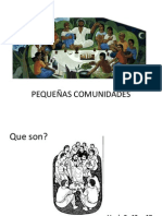 6 PEQUEÑAS COMUNIDADES