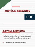 Subtidal Lecture