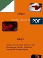 Expo de Fisiologia