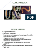 Lecture 4 &5 Annelid A, Molluska, Echinoderm at A