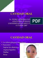 4ta Clase Cabeza - Fosa Oral - Dr. Herrera