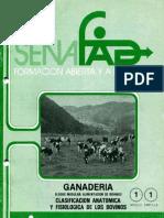ganaderia6-1
