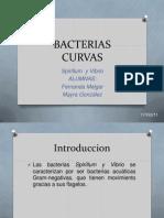 BACTERIAS CURVAS