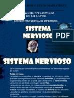 Sistema Nervioso Expo Sic Ion de Anatomia II Terminado
