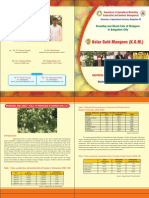 Branding and Direct Sale of Mangoes in Bangalore city