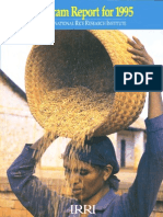 Program Report for 1995