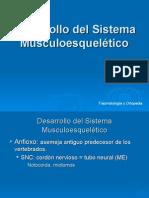 Desarrollo Del Sistema Musculoesquelético1 2005 Corregir