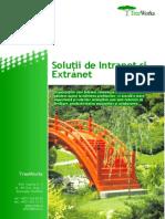 solu-ii-de-intranet-i-extranet