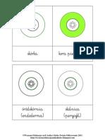 Budowa pierwotna korzenia_karty 3-częściowe Montessori