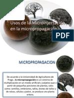 Uso de La Microinjetacion