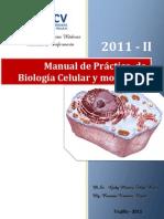 Manual de Práctica   de Biología Celular y molecular -SESIÓN 01