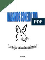 PROYECTO HAGAMOS CONEJO